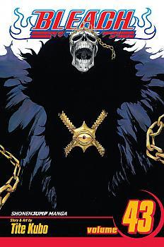 Bleach Manga Vol.  43