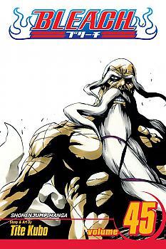 Bleach Manga Vol.  45