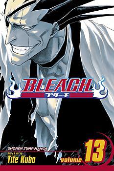 Bleach Manga Vol.  13