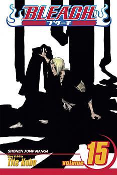 Bleach Manga Vol.  15