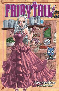 Fairy Tail Manga Vol.  14