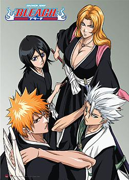 Bleach Wall Scroll - Soul Reaper Downview