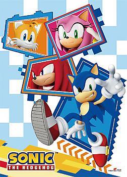 Sonic High End Wall Scroll - Team Sonic