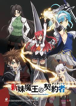 Testament of Sister New Devil Wall Scroll - Key Art