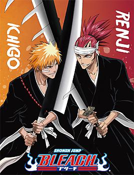 Bleach Blanket - Ichigo vs Renji